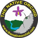 orquideas.eco.br - The Native Orchid